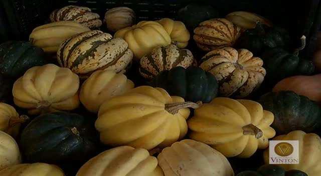 Vinton Farmers' Market PSA