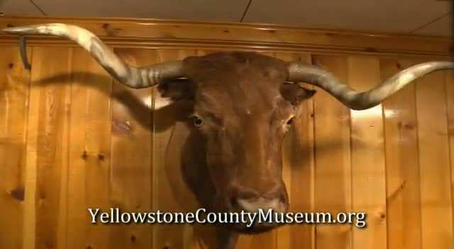 Yellowstone County Museum PSA Apr 13