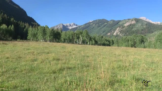 Noxious Weeds & Snowmass Village