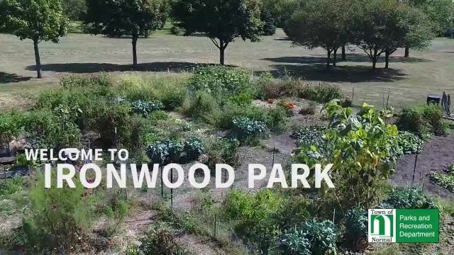 Ironwood Drone Footage