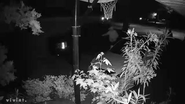 05202019.EastWildernessWayAutoTheft_video