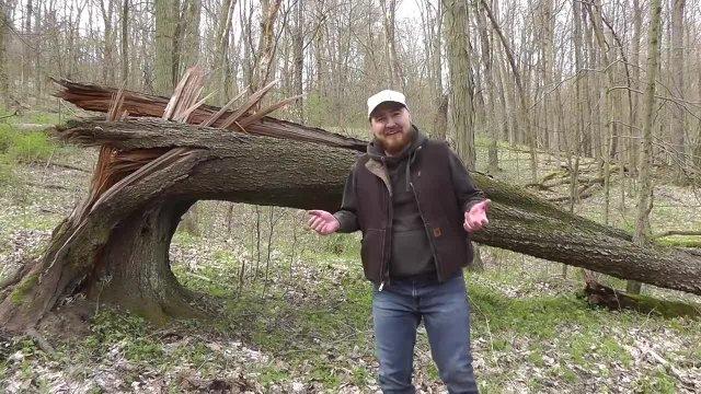 Dan in the Woods - Animal Habitats Part 2