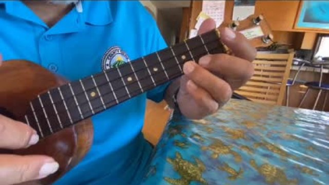 How to Play the Ukulele Am & C Chords