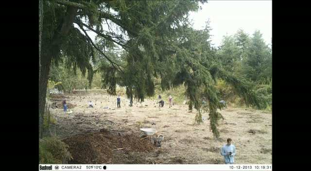 Swan Creek Community Planting