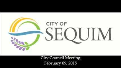 City Council Meeting - 020915