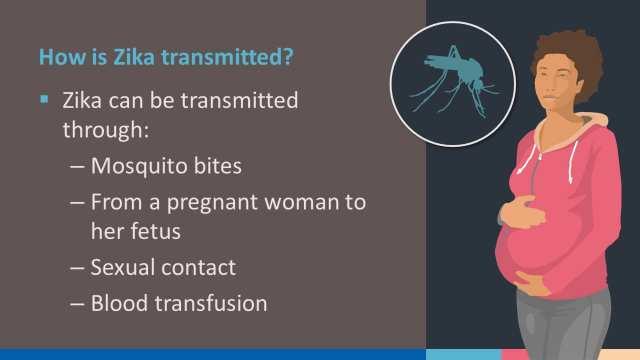 Zika Virus Presentation